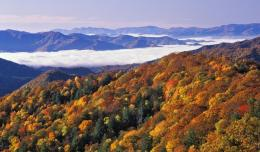 appalachian mountains wallpaper 934
