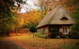 Beautiful house in the woods hd wallpaper » Beautiful house in the 1592