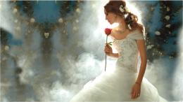 Princess Wedding Dresses HD Wallpaper Disney Princess Wedding Dresses