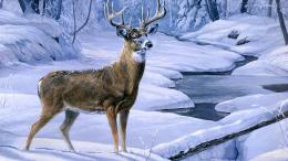 Black Deer HD Wallpapers