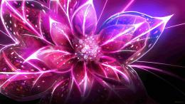 High Definition Cool Flower Wallpaper
