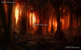 Download wallpaper forest, Trees, fire, fire free desktop wallpaper in