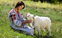 peasant girl with goat on field green plains countryside hd wallpaper