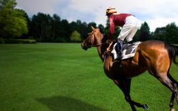Horse Racing HD Wallpapers