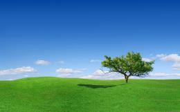 green landscape nature best wallpapers new fresh desktop landscape 1300