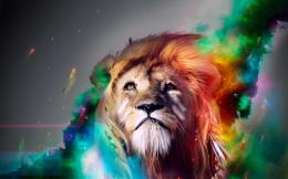 Lion rainbow art Wallpapers Pictures Photos Images