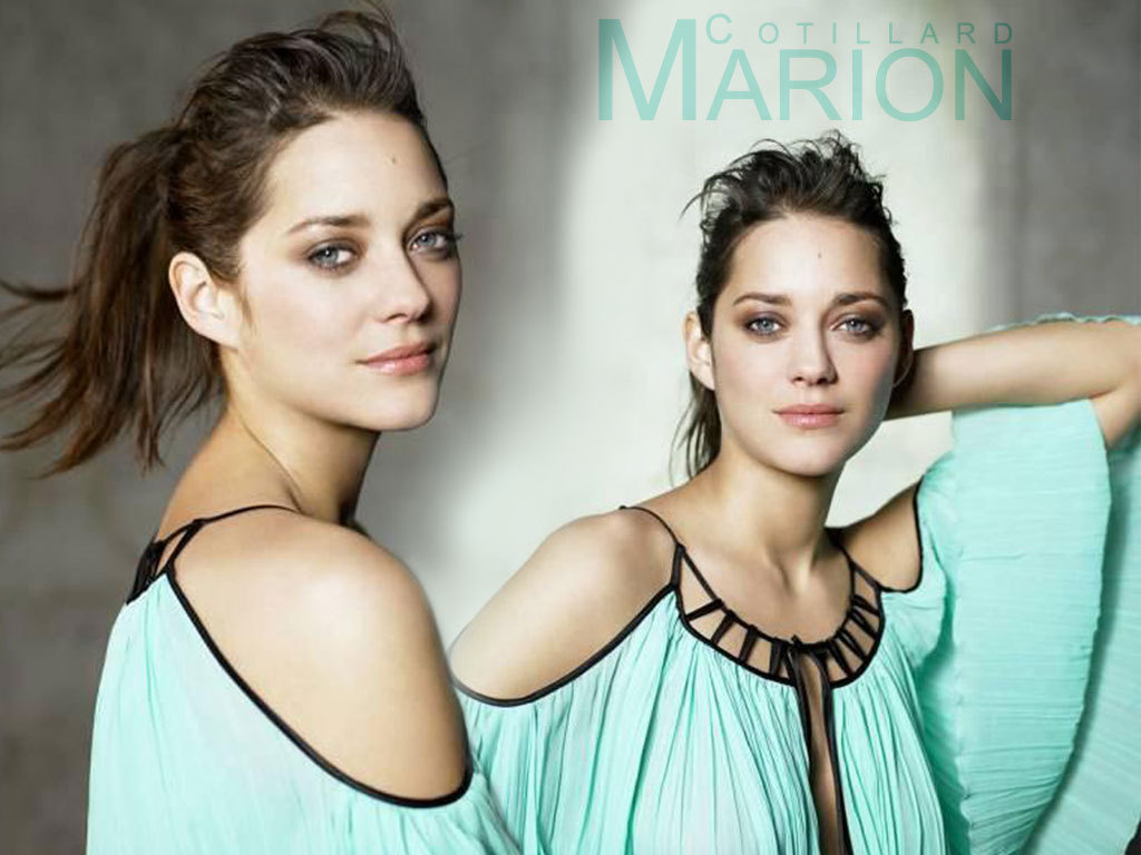 wallpapers and pictures of Marion Cotillard Best Wallpapers as often 1669