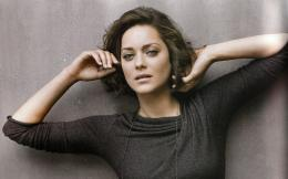 Beautiful Marion Cotillard HD Wallpaper 1735