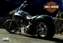 Harley Davidson Bikes Wallpapers HD, Harley Davidson Bikes Wallpapers