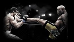 Sports Ufc Hd Widescreen Wallpaper with 1920x1080 Resolution