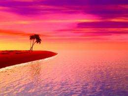 Purple Sunset On The Beach 8000 Hd Wallpapers