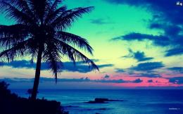 description the beach sunset 23 hd images wallpapers is wallpapers for