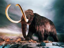 Description: Download Woolly Mammoth wallpaper desktop background in 1870
