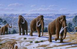 Woolly mammoth migration mountain elephant 1221