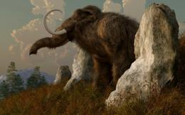 Woolly Mammoth Wallpapers 662