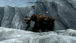 Woolly Mammoth Wallpapers 748