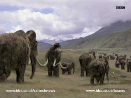 woolly mammoth Prehistoric 802