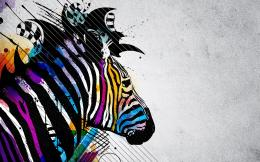 Zebra Colored Backgrounds Wallpaper with 1680x1050 Resolution