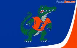 Gator Desktop Wallpapers 1898