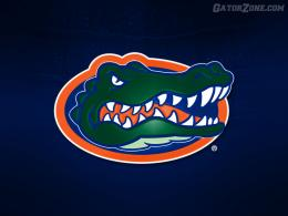 Gator wallpaper Background 1911