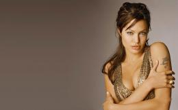 Angelina Jolie New HD Wallpapers 2014 1053