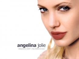 angelina jolie wallpapers angelina jolie wallpapers angelina jolie 896