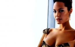 Angelina Jolie Widescreen High Definition Wallpaper 840