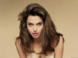 angelina jolie wallpapers angelina jolie wallpapers angelina jolie 437