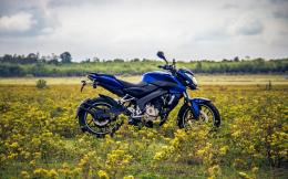 Bajaj Pulsar Bike Wallpaper 642