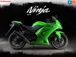 download bajaj ninja wallpaper 275