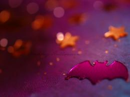 Purple Bat Wallpaper 12630 Hd Wallpapers 1777