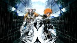 Tagged with: Bleach HD Wallpapers 1111