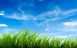 blue sky green grass desktop wallpapers of high resolution 541