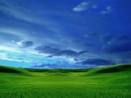 green grass blue sky desktop wallpaper with 1024x768 resolution 248