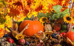 Autumn Holidays HD Wallpaper 4 722