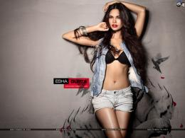 Esha Gupta 1024x768 Wallpaper # 21 1312