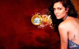esha gupta new wallpapers 2012 esha gupta new wallpapers 2012 esha 1496