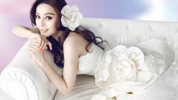 Fan Bingbing wallpaper 210