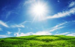 green grass blue sky wide desktop wallpapers in hd free 1012