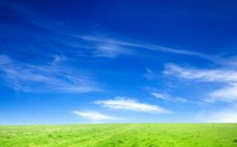 Blue Sky and Green Grass 660