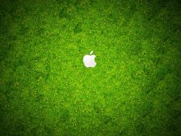 Wallpaper: apple green grass HD wallpapers 1845