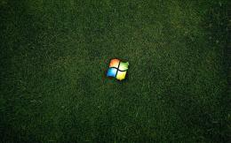 Download: Windows on Grass HD Wallpaper 1241