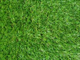 green grass hd wallpaper green grass hd wallpaper was posted in 1907