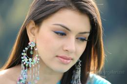 Hansika Motwani HD Wallpapers 1805