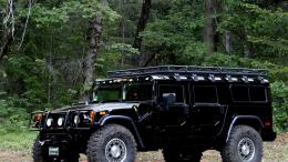 Car, Forest, Hummer H1, Hummer, Cars wallpapers 160