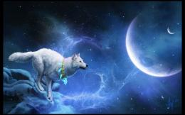What an impressive Wolf Running Wide Desktop Wallpaper will look nice 1242