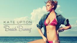 Kate Upton Bikini Background Hd Wallpaper 215