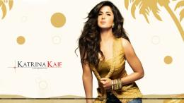 Katrina Kaif 2015 | 1920 x 1080 | Download | Close 644