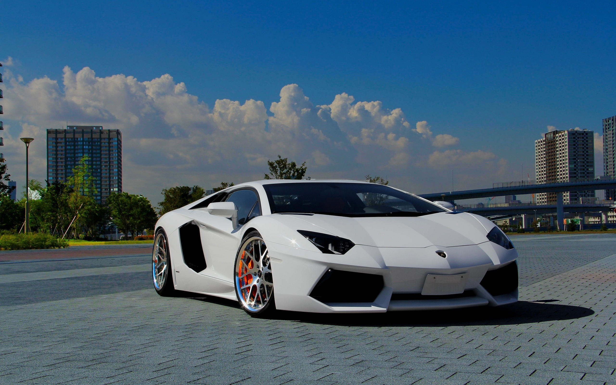 Lamborghini Aventador White Wallpapers Pictures Photos Images 831