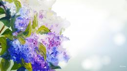 Painted hydrangea spring purple blue bokeh HD Wallpaper 686